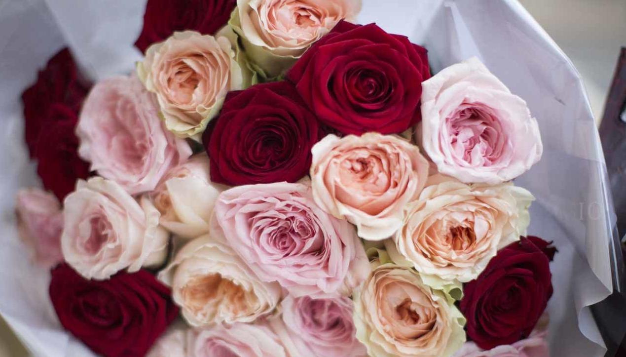 Gros plan sur un bouquet de roses