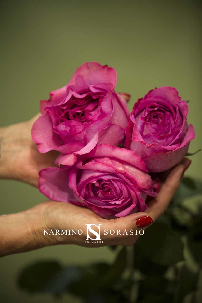 De magnifiques fleurs