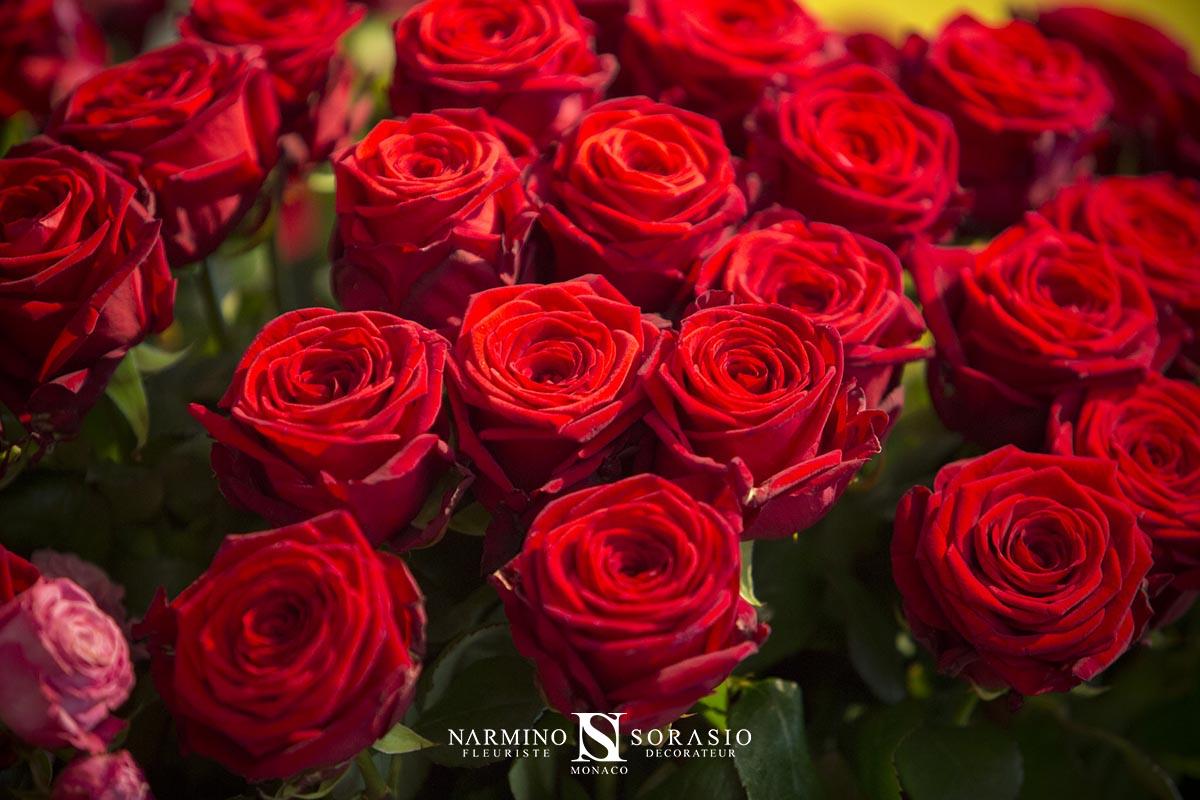 Un bouquet de roses rouges pour la Saint-Valentin